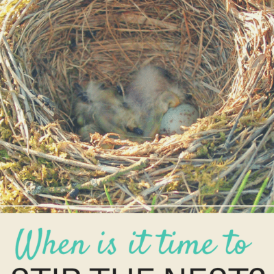 WHEN IS IT TIME TO STIR THE NEST?