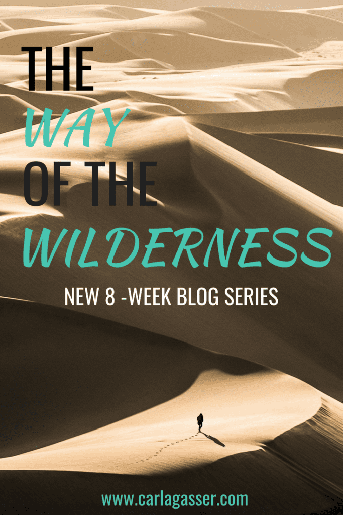 The Way of the Wilderness