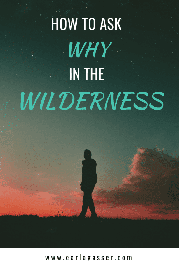 How to Ask Why in the Wilderness