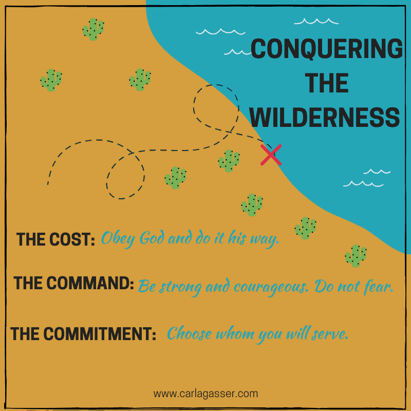 CONQUERINGTHE WILDERNESS-3