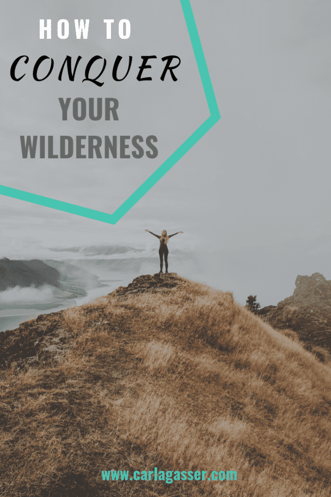 How to Conquer Your Wilderness