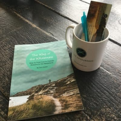 THE WAY OF THE WILDERNESS DEVOTIONAL NOW AVAILABLE!