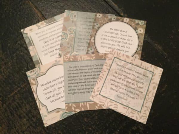 Wilderness Wisdom Cards